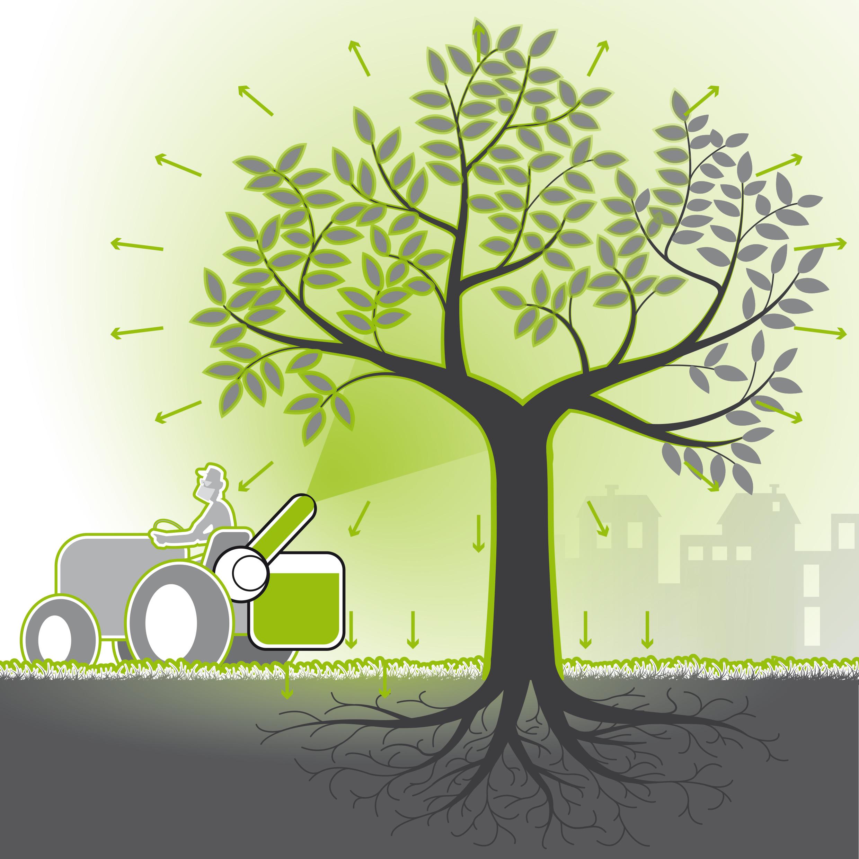 Dérives du traitement des arbres par pulvérisation.